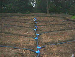 this is how garden drainage should lookessential in wet areas to avoid ponding on the surface of the garden - Garden Drainage